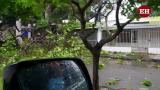 En video | Recorrido por San Andrés muestra situación tras paso de Iota