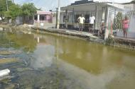 Habitantes del barrio Hipódromo en Soledad señalan la alcantarilla y las aguas servidas estancadas.