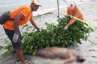 Extranjero ahogado en cabañas de Buritaca.