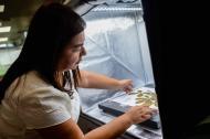 Una caja de luz permite la captura precisa de la imagen para ser subida a la base de datos web del Herbario UNO, en la Universidad del Norte.