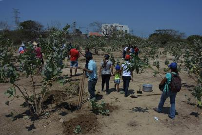 Docentes, egresados y vecinos en siembra de árboles en terreno proyectado para el nodo.