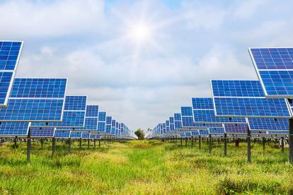 Los paneles solares son los dispositivos que transforman la radiación solar en energía.