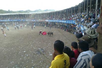 Durante las fiestas de corralejas que se realizaron en Ciénaga de Oro.