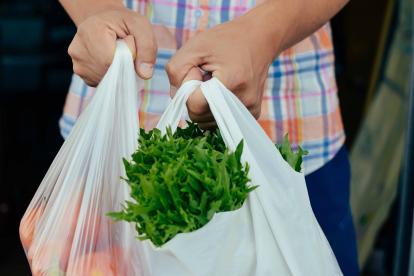 En el país se acabó la circulación de bolsas inferiores a 30x30 centímetros en 2016.