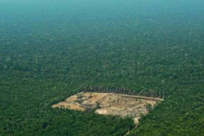 Imagen de la Amazonía.