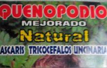 Quenopodio no se encuentra aprobado en Colombia: la alerta del Invima