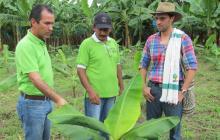 El gerente general del ICA, Luis Humberto Martínez, un productor, y el viceministro de Agricultura, Andrés F. García.