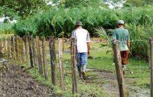Confirman acusación contra capitán de la Policía por muerte de indígena en el Cauca