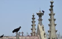 Restauración, la 'plegaria' de los templos