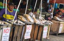 Los comerciantes aseguran que el alcalde ordena reubicación de manera improvisada.