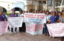 55 mujeres víctimas del despojo reclaman 1.332 hectáreas de tierra en Magdalena