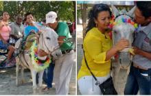 'Biónico' y 'Muñeca' dejarán de trabajar en las calles de Santa Marta