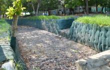 Solución hidráulica y recuperación de Jardín Botánico va en 55%