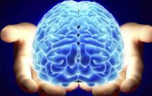 Lanzan libro digital sobre neurología
