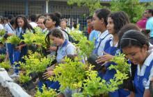 Estudiantes del Colegio San Francisco Javier en la jornada ecológica.