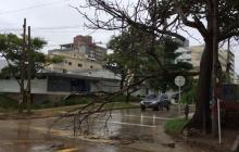 Habitantes del norte de Barranquilla reportan fuertes vientos durante la lluvia de este domingo