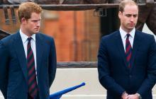 Los príncipes Guillermo y Enrique mandan a hacer una estatua de la princesa Diana
