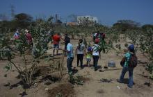 Polémica por construcción de nodo del Sena en la Normal La Hacienda