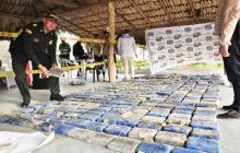 Incautan 342 kilos de coca del Clan del Golfo en Sucre