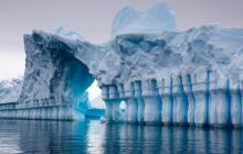 La Antártida reverdece por efecto del cambio climático