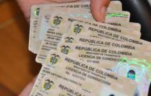 Este año han sido retenidas 1.231 licencias de conducción por embriaguez