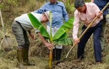Presidente Santos en la implementación del PNIS en la vereda El Orejón, municipio de Briceño en Antioquia.