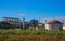 Bioenergy establece récord en producción de caña de azúcar