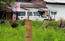 Cruz Roja recibió 24 menores que salieron de zonas veredales