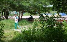Un estudiante transita por la maleza producto de las inundaciones en las canchas y zonas verdes.