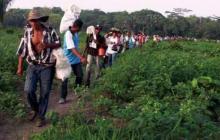 Comisión de seguimiento denuncia incumplimiento de la Ley de Víctimas
