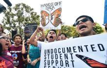 ¿Adiós 'Dreamers'? Trump presionado por amnistía migratoria a jóvenes