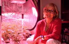 La medica Terry Colmenares tiene un cultivo de siete plantas de cannabis.