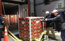 Walmart venderá aguacate hass de Colombia en Estados Unidos