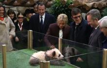 La primera dama de Francia, Brigitte Macron, durante el bautizo del bebé panda.