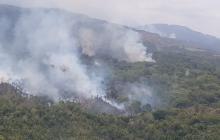 Incendios forestales tienen en alerta a La Guajira y Bolívar