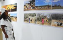 Imágenes etnográficas de un 'Pelícano'
