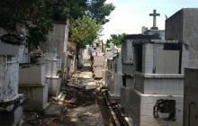 Ataque de abejas en cementerio de Manga: una mujer herida
