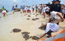 Admiten tutela que frenaría el cierre parcial de Playa Blanca