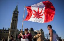 Canadá aprueba proyecto que legaliza el consumo de la marihuana