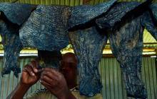 En Kenia transforman la piel de pescado en cuero