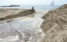 Abren la desembocadura del río Manzanares para oxigenar peces