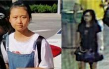 La extraña desaparición de una niña china en el aeropuerto de Washington