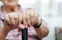 Población mayor de 60 años viene aumentando en el país: estudio