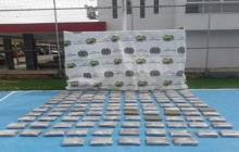 Dirección de Antinarcóticos incauta 123 kilos de marihuana en empresas de envío