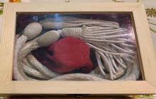 El cíngulo ensangrentado que llevaba monseñor Romero cuando fue asesinado el 24 de marzo de 1980.