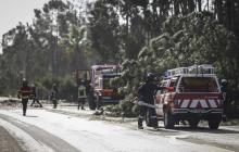 Bomberos de Portugal remueven varios árboles que cayeron sobre las carreteras tras el paso de la tormenta Leslie.
