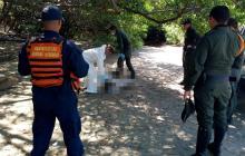 Pescador falleció en una playa del Parque Tayrona