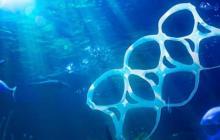 Proyecto busca regular el uso de plásticos en San Andrés