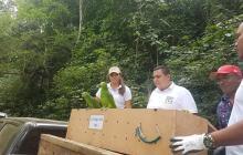 """Operación """"regreso a la libertad IV"""": 163 especies silvestres retornan a su hábitat"""