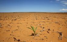 ONU advierte que el mundo se aleja de los objetivos climáticos